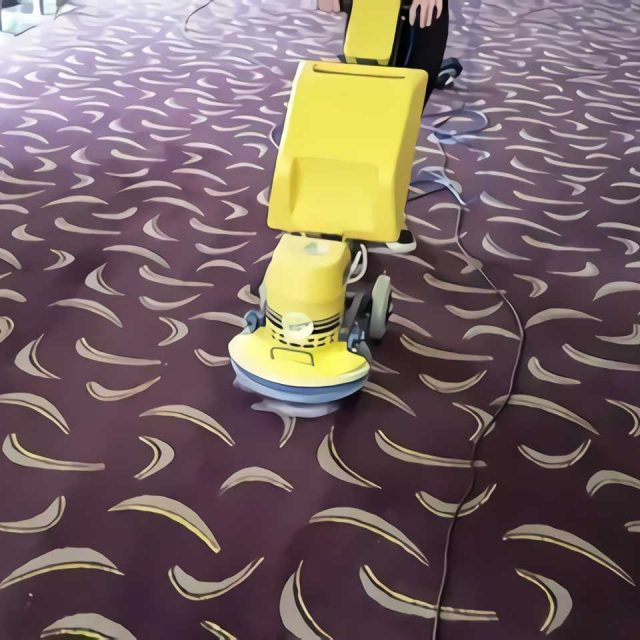 carpet cleaning1